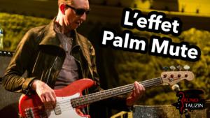 cours de basse, débutant , technique, tuto, Palm mute, tablature, Pino palladino